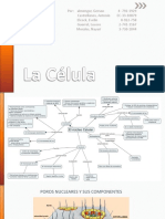 Taller de histología.pptx