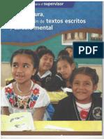 Manual de Toma de Lectura , Produccion de Textos y Calculo Mental