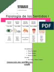 Fisiologia de Los Sentidos i