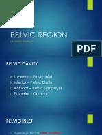 pelvic region