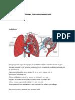 Fiziologia Și Mecanismele Respirației -Referat