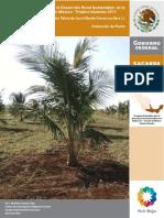 coco_hibrido_produccion (1).pdf