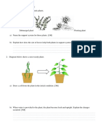 support in plants.docx