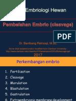 Pembelahan Embrio (Cleavage) S2 2017