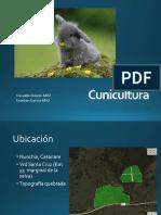 conejos-121018093215-phpapp02