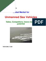 Global Market_USV_2010.pdf