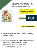04 Metabolisme Xenobiotik NW