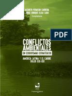 Libro Conflictos Ambientales en Ecosistemas Estrategicos Univalle