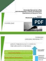 Clase 02_Flexibilidad PNF EntrenamientoInestable