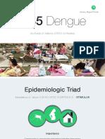 Dengue Genetics Presentation