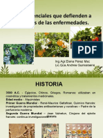 03 Aceites Esenciales Que Defienden a Las Plantas de Las Enfermedades (1)