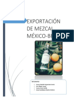 MEZACAL-EQUIPO-DE-DANY.docx