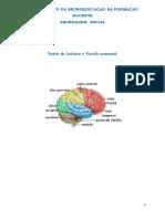 Neuroeducação- Contexto