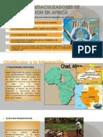 Integracion Africa - Ale- Avance 1