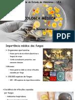 4 - Micologia Médica - Parcial(1).pdf