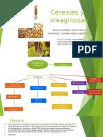 Cereales y Oleaginosas