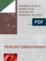 Desarrollo de La Morfología Externa Del Embrión