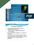 Estructura Molecular TOM
