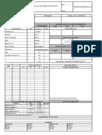 Formato Registro Prueba Hidrostatica