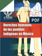Car DH Pueblos Indigenas
