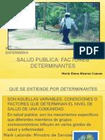saludpublicadeterminantes-121207135858-phpapp01