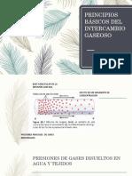 INTERCAMBIO GASEOSO.pptx