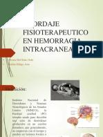 Abordaje Fisioterapeutico Pci