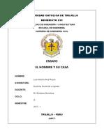 Ensayo Dsi Luis Alberto Alva Reyes - Ing Civil