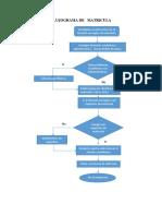 Flujograma de Matricula 2016