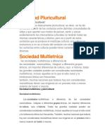 Sociedad Pluricultural.docx
