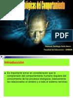 BASES BIOLOGICAS DEL COMPORTAMIENTO.ppt