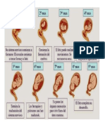 9 Meses Embarazo