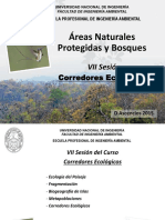 7. Corredores de Conservación.pdf