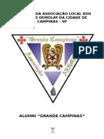 Estatuto Alumni Grande Campinas