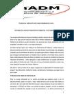 s8 Adriana Moreno Informe