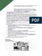 typhoid 1.docx