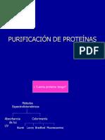 Seminario 1 Purificación de Proteínas