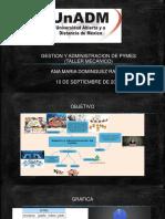 GESTION Y ADMINISTRACION DE PYMES.pptx
