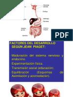 Proc cogn basi 23.pptx