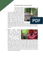 Tumbuhan Langka Di Indonesia Yang Terancam Punah