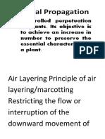 Air Layering Principle of Air Layering