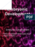Embryonic Development.pptx