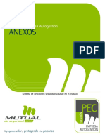 anexos_programa_pec_autogestion.pdf