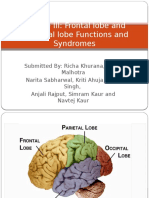 Frontal lobe and Temporal lobe Functions and Syndromes.pptx