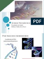Aula - Ácidos Nucléicos e Genoma 2014