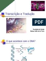 Transcrição e Tradução - 2014