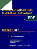curs 5 EHIP scurt.ppt