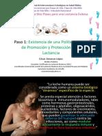 PASO 1 Política Lactancia Materna Amanzo