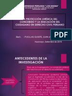 La Protección Jurídica Del Concebido y La Educación Del Ciudadano en El Derecho Civil Peruano