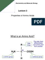 Lecture 3 Amino Acids 2017